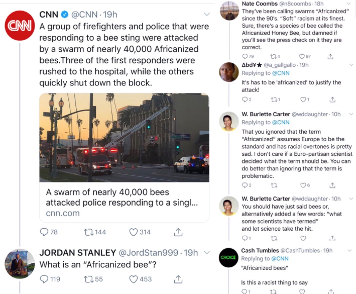 Respondents to CNN Article About 'Africanized Bee Attack' Complain of Racism