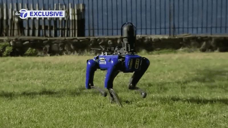 Roboterhunde kommen jetzt bei der Polizei in New York zum Einsatz
