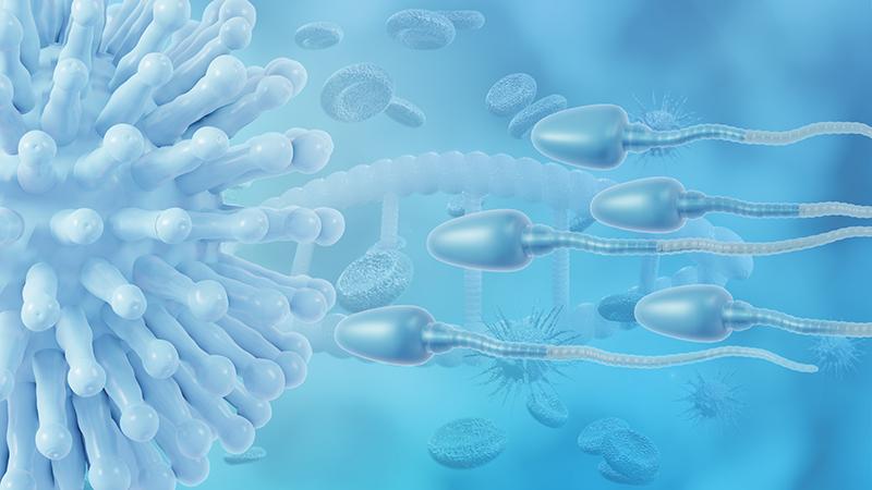 Wissenschaftler warnen eindringlich: COVID reduziert die Fruchtbarkeit