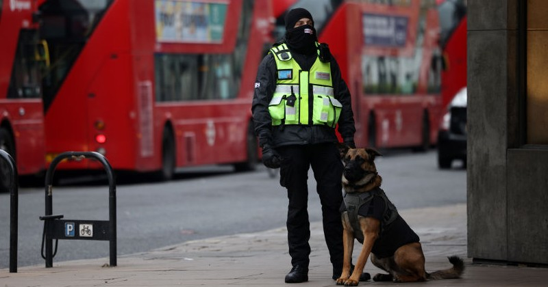 """Umfrage: """"Signifikanter Anteil der Briten"""" sagt, dass sie den Lockdown genossen haben"""