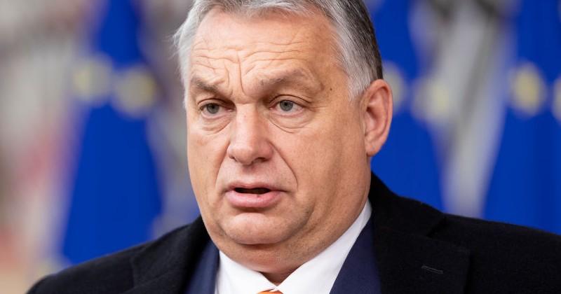 Ungarn kritisiert die EU: Sie habe den Bürgern von Ungarn nicht vorzuschreiben, wie sie ihre Kinder zu erziehen haben